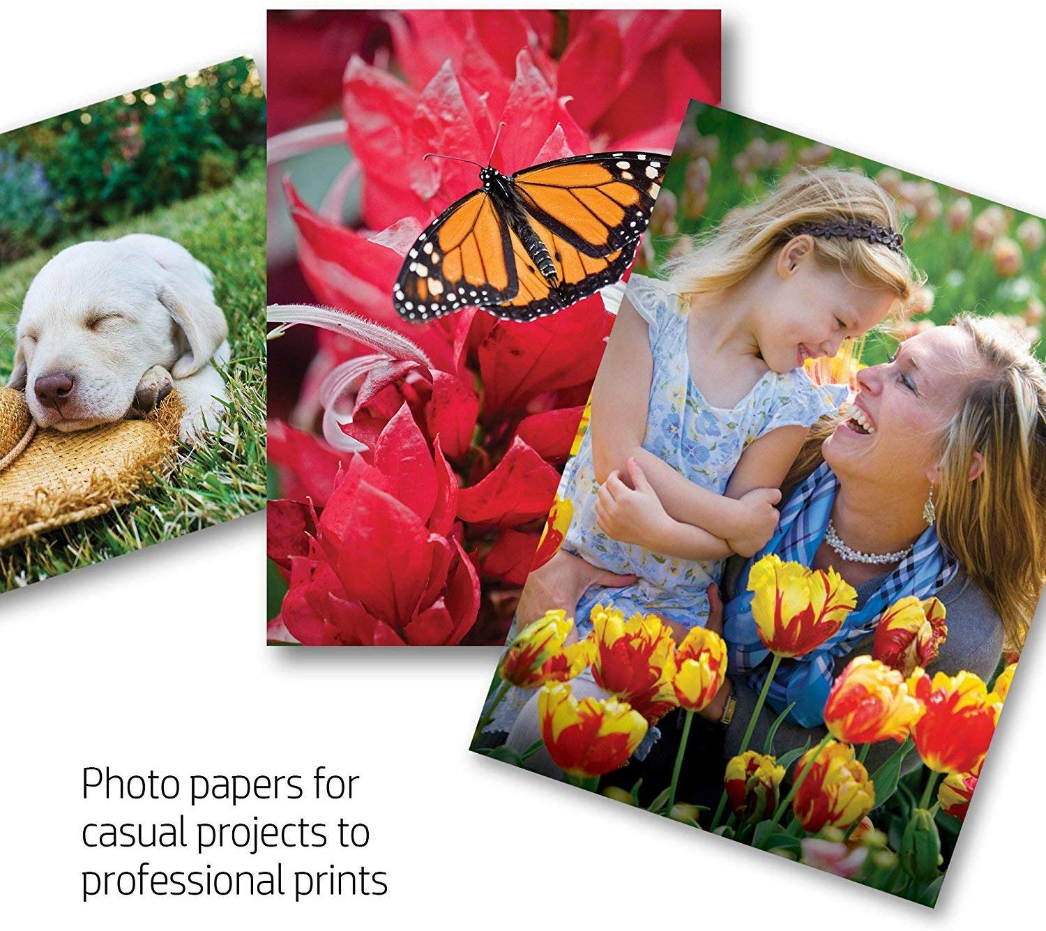 10 Best Inkjet Photo Paper [UK]